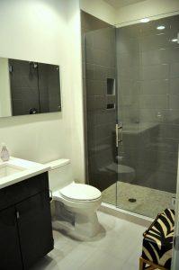 Frameless Shower w/Ladder Handle